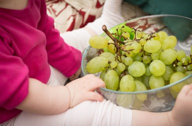 Dar uvas enteras a los pequeños es un peligro