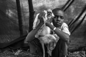 """Ahmed Sadik, de diez años de edad, posa para un retrato en el campamento de refugiados de Jamam en el condado de Maban, Sudán del Sur, el 7 de agosto de 2012. El continuo bombardeo aéreo obligó a Ahmed ya su familia a huir de su casa en Taga Village. La cosa más importante que Ahmend pudo traer con él es """"Kako"""", su mono mascota. Kako y Ahmed hicieron el viaje de 5 días de Taga a la frontera sur sudanesa juntos, en la parte trasera de un camión. Ahmed dice que no podía imaginar la vida sin su mejor amigo Kako, y que lo más difícil de dejar el Nilo Azul era tener que dejar atrás el burro de su familia. Foto © Brian Sokol. ACNUR"""