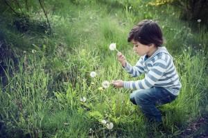 Educación emocional en la Naturaleza