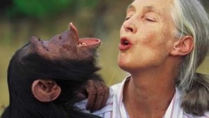 JANE GOODALL ● Primatóloga