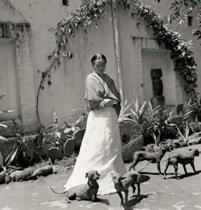 Frida y Diego eran afines al perro xoloitzcuintle. Actualmente, el museo Dolores Olmedo conserva algunos ejemplares descendientes de los canes originales de la pareja.