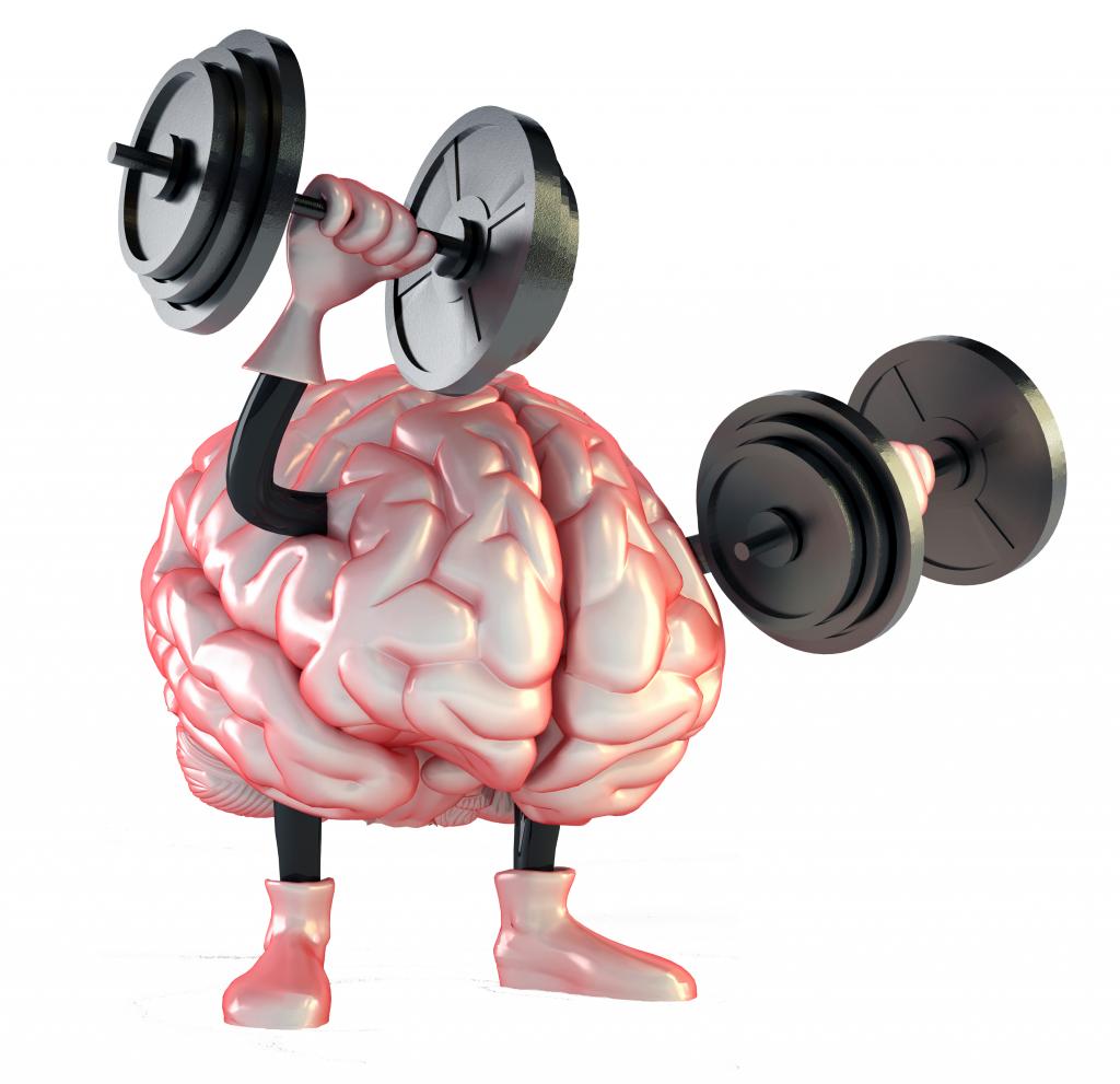 Plasticidad cerebral o neuroplasticidad